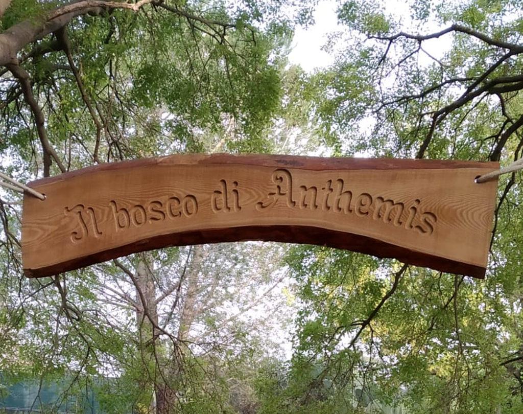 Targa personalizzata in legno di castagno scavata in bassorilievo